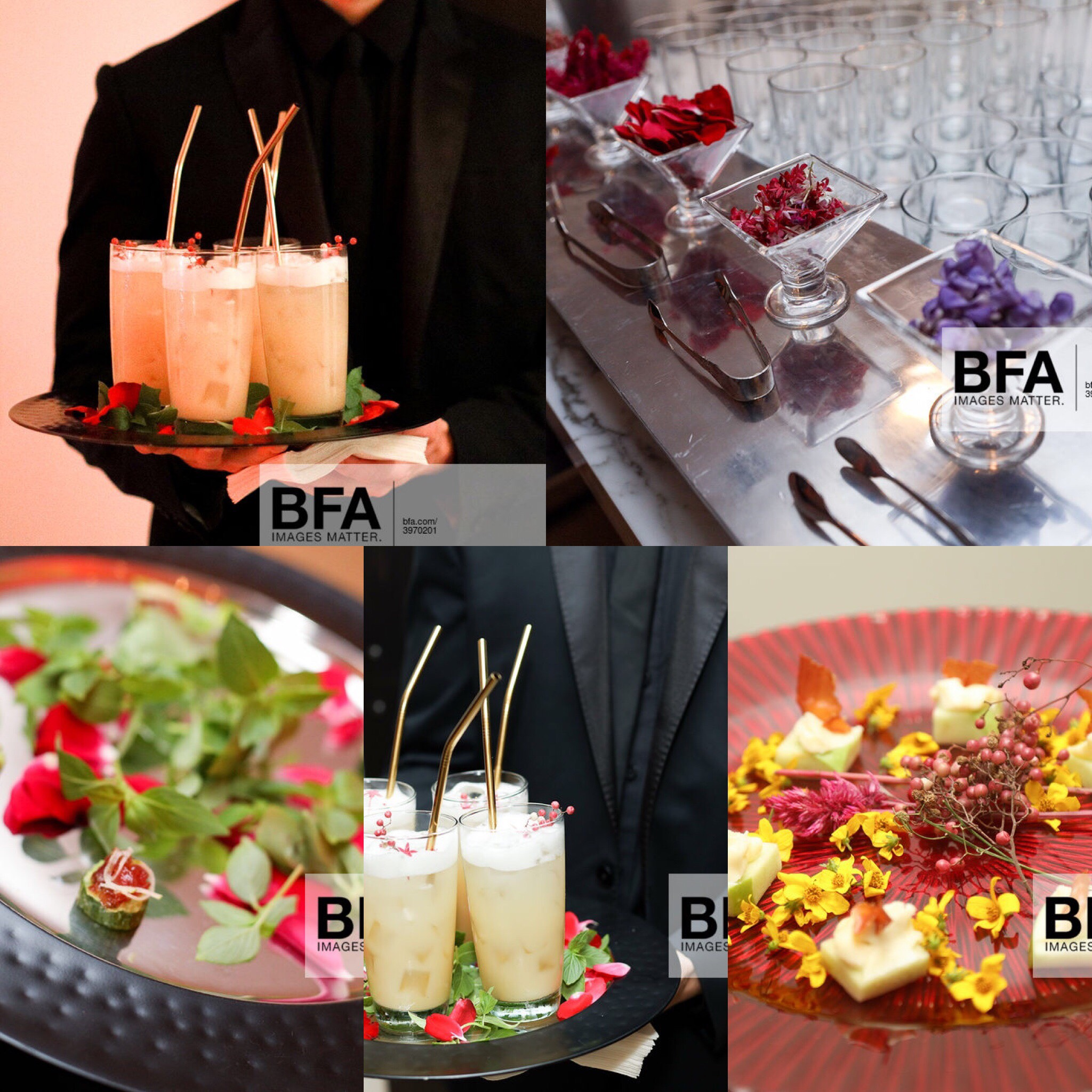 NY Catering Service:  Mixology and Canapés